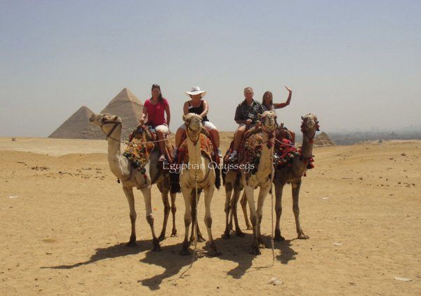 Giza: camel riding